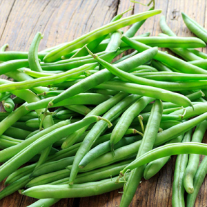Free Packet of Organic Green Bean Seeds from Tasty Bite.