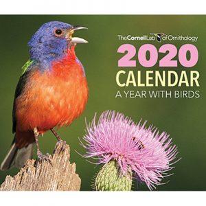 Free Cornell Lab of Ornithology's 2020 Calendar