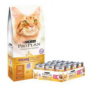 Free Purina Cat Food for Testers
