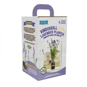 Free Windowsill Lavender Planter from Social Nature