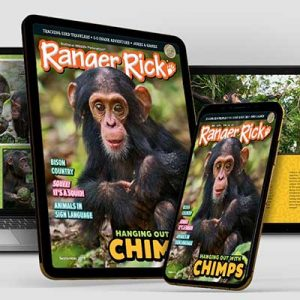 Free Digital Versions of Ranger Rick Magazines