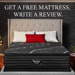 Free Beutyrest Products for Reviewers