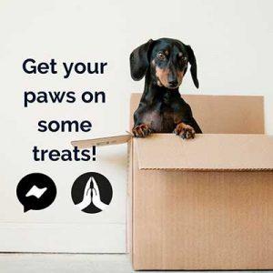 Free Gratsy Pet Product Samples