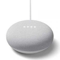 Free Google Nest Mini for Canadians with Spotify Premium