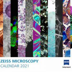 Free Zeiss 2021 Calendar