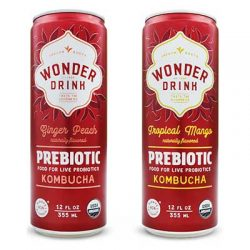 Free Wonder Drink Prebiotic Kombucha from Moms Meet