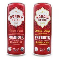 Free Wonder Drink Prebiotic Kombucha from Moms Meet