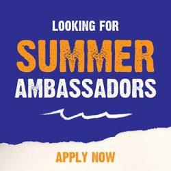 Free Surf Taco Swag for Ambassadors