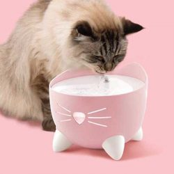 Free Pixi Drinking Fountain from Catit